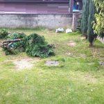 名古屋市 西区 山砂入れ ガーデン植裁 スタンプコンクリート